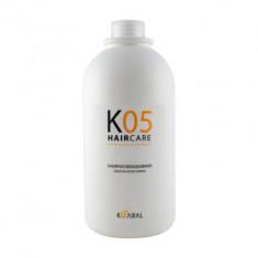 Шампунь для восстановления баланса секреции сальных желез Kaaral К05 Sebum Balancing Intense Treatment 1000мл
