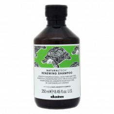 Шампунь обновляющий Davines Renewing Shampoo 250мл