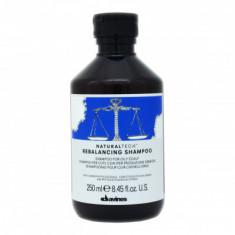 Шампунь балансирующий Davines Rebalancing Shampoo 250 мл