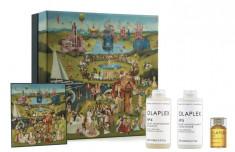 OLAPLEX Набор для волос Ежедневный уход и защита (масло 30 мл + шампунь 250 мл + кондиционер 250 мл) Olaplex